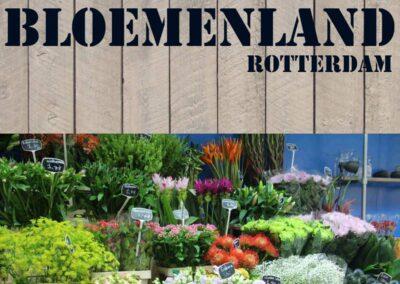 Bloemenland Rotterdam